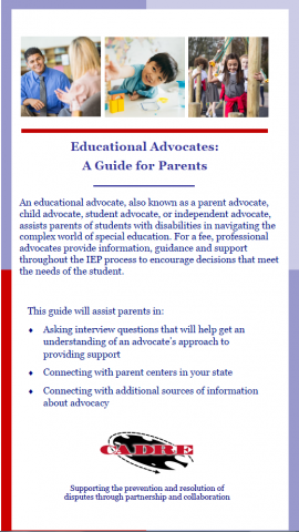 Scree Shot of Facilitative Advocacy Brochure